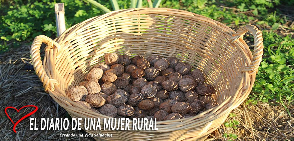 Las Nueces: variedades, usos culinarios, conservación y recetas